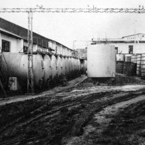 с. Фетица. Винзавод. 1973 г. Фото из архива Леонида Ходько.