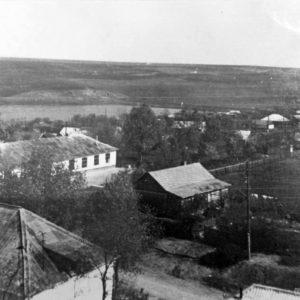 Село Троицкое. Вид с церкви. Фото предоставила Татьяна Думанова.