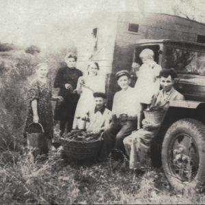 Метод сбора винограда так и не изменился с тех пор. Снимок, скорее всего, был сделан в 50-е годы. Источник: Адриан Пыслару.