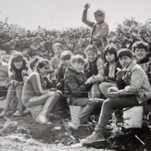 Ученики школы №2 на винограднике вместе с учителем биологии Аллой Никитичной.